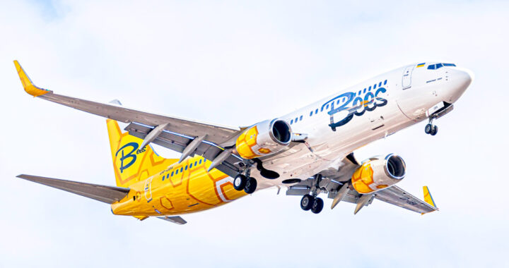 bees airline ავიაბილეთები